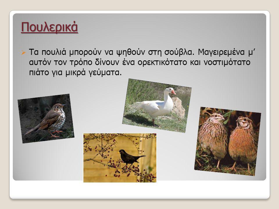 Πουλερικά  Τα πουλιά μπορούν να ψηθούν στη σούβλα. Μαγειρεμένα μ' αυτόν τον τρόπο δίνουν ένα ορεκτικότατο και νοστιμότατο πιάτο για μικρά γεύματα.