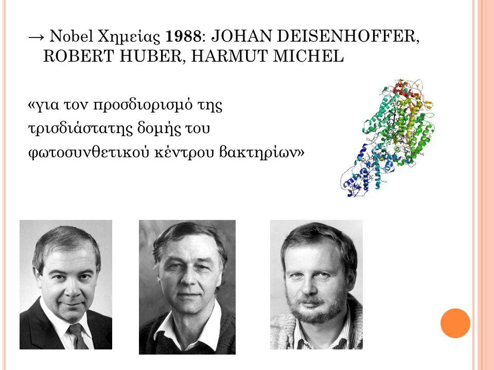 → Nobel Χημείας 1988 : JOHAN DEISENHOFFER, ROBERT HUBER, HARMUT MICHEL «για τον προσδιορισμό της τρισδιάστατης δομής του φωτοσυνθετικού κέντρου βακτηρίων»