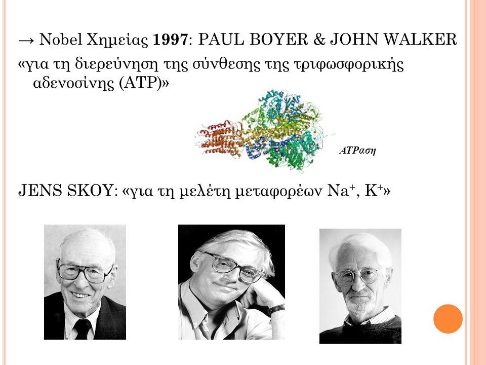 → Nobel Χημείας 1997 : PAUL BOYER & JOHN WALKER «για τη διερεύνηση της σύνθεσης της τριφωσφορικής αδενοσίνης (ΑΤΡ)» JENS SKOY: «για τη μελέτη μεταφορέων Na +, K + » ΑΤPαση