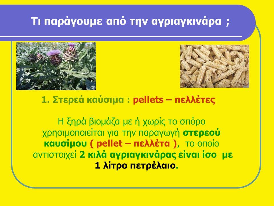 Τι παράγουμε από την αγριαγκινάρα ; 1. Στερεά καύσιμα : pellets – πελλέτες Η ξηρά βιομάζα με ή χωρίς το σπόρο χρησιμοποιείται για την παραγωγή στερεού