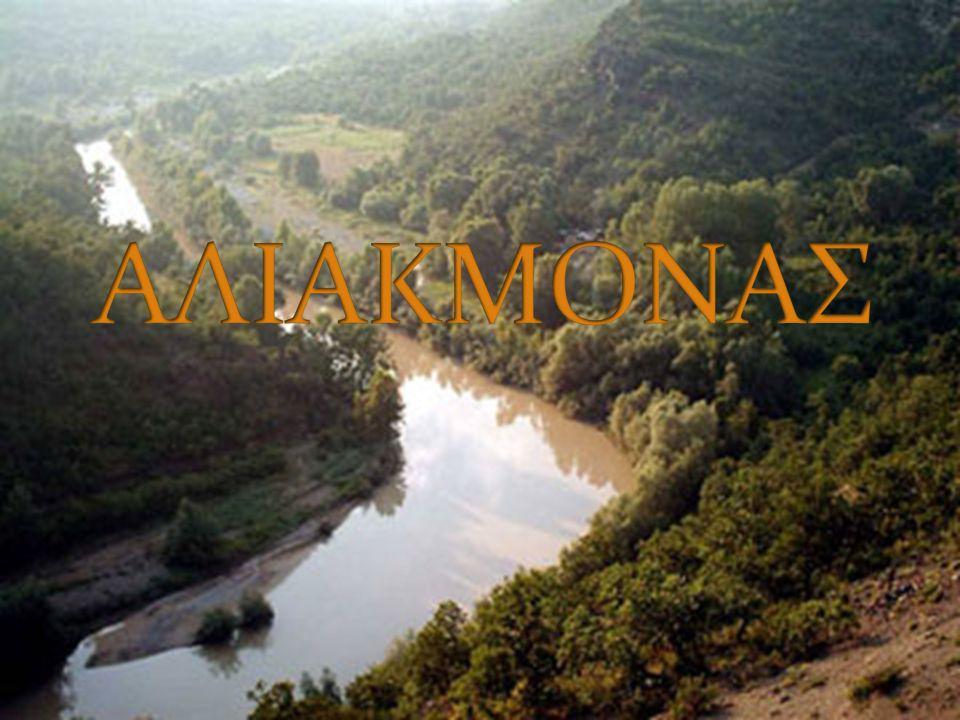 Το όνομα Αλιάκμων είναι σύνθετο και προέρχεται από το άλς (άλας, θάλασσα) και από το άκμων (αμόνι).