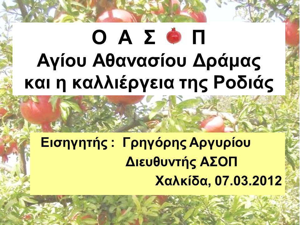 Ο Α Σ Π Αγίου Αθανασίου Δράμας και η καλλιέργεια της Ροδιάς Εισηγητής : Γρηγόρης Αργυρίου Διευθυντής ΑΣΟΠ Χαλκίδα, 07.03.2012