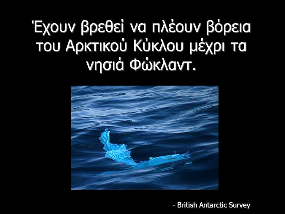 Έχουν βρεθεί να πλέουν βόρεια του Αρκτικού Κύκλου μέχρι τα νησιά Φώκλαντ.