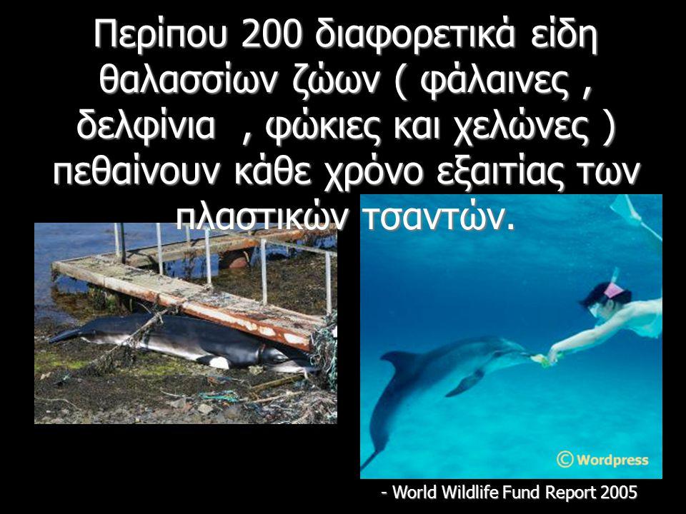 Περίπου 200 διαφορετικά είδη θαλασσίων ζώων ( φάλαινες, δελφίνια, φώκιες και χελώνες ) πεθαίνουν κάθε χρόνο εξαιτίας των πλαστικών τσαντών.