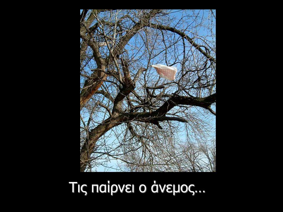 Τις παίρνει ο άνεμος…
