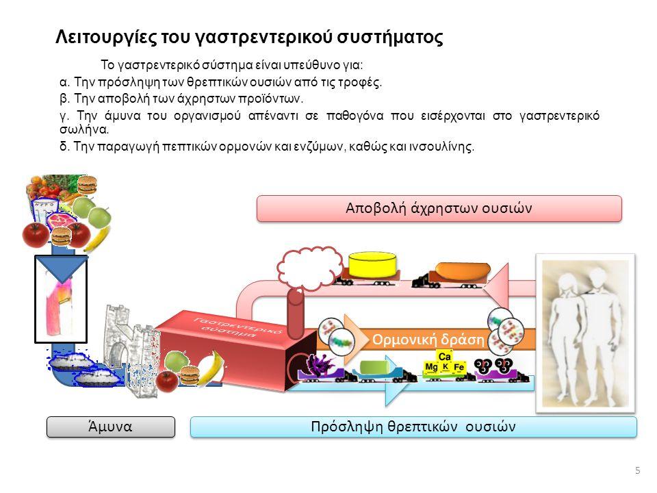 Ορμονική δράση Λειτουργίες του γαστρεντερικού συστήματος Το γαστρεντερικό σύστημα είναι υπεύθυνο για: α. Την πρόσληψη των θρεπτικών ουσιών από τις τρο