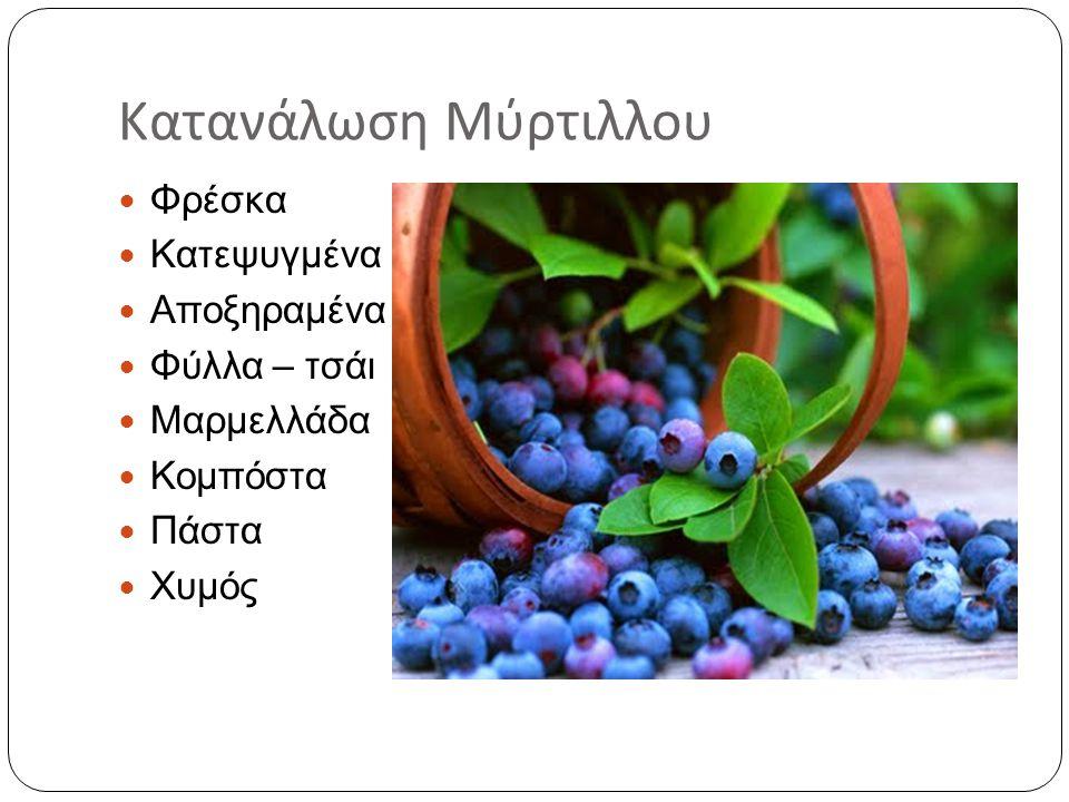 Κατανάλωση Μύρτιλλου  Φρέσκα  Κατεψυγμένα  Αποξηραμένα  Φύλλα – τσάι  Μαρμελλάδα  Κομπόστα  Πάστα  Χυμός