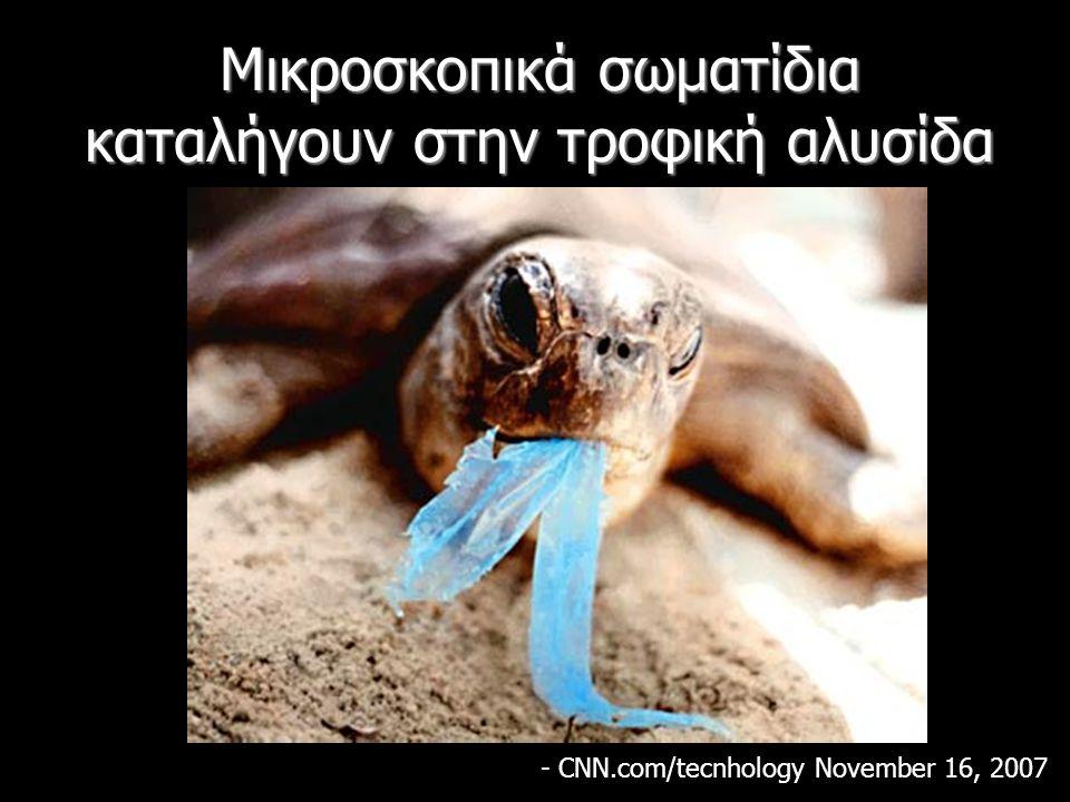 Μικροσκοπικά σωματίδια καταλήγουν στην τροφική αλυσίδα - CNN.com/tecnhology November 16, 2007
