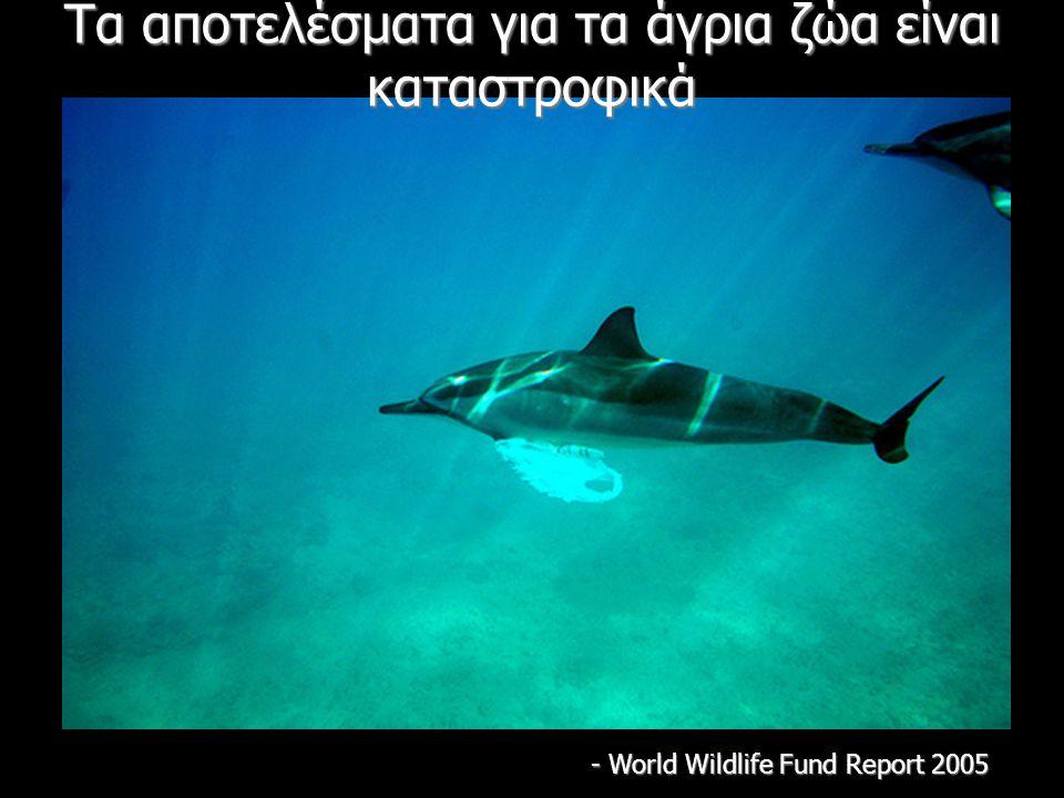 Τα αποτελέσματα για τα άγρια ζώα είναι καταστροφικά - World Wildlife Fund Report 2005