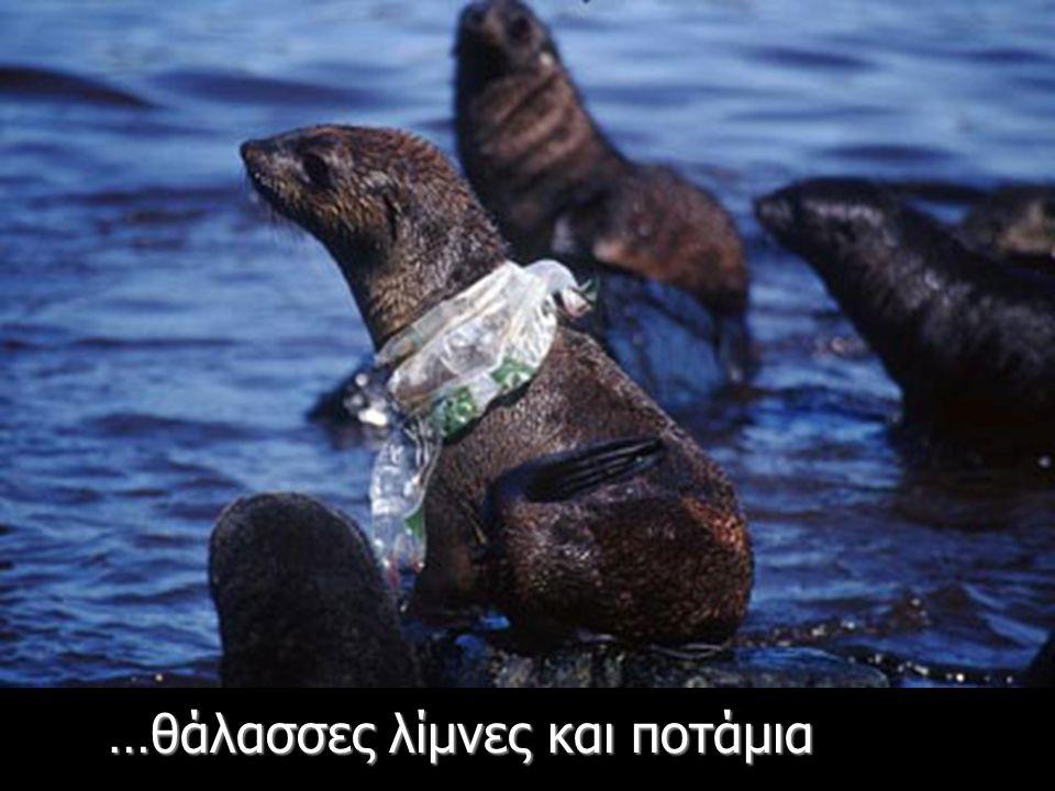 Αφού τις καταπιούν εκλαμβάνοντάς τις ως τροφή - World Wildlife Fund Report 2005