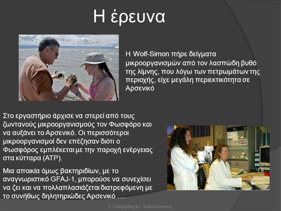 Χ. Γκοτζαρίδης & Γ. Φασουλόπουλος Η Wolf-Simon πήρε δείγματα μικροοργανισμών από τον λασπώδη βυθό της λίμνης, που λόγω των πετρωμάτων της περιοχής, εί