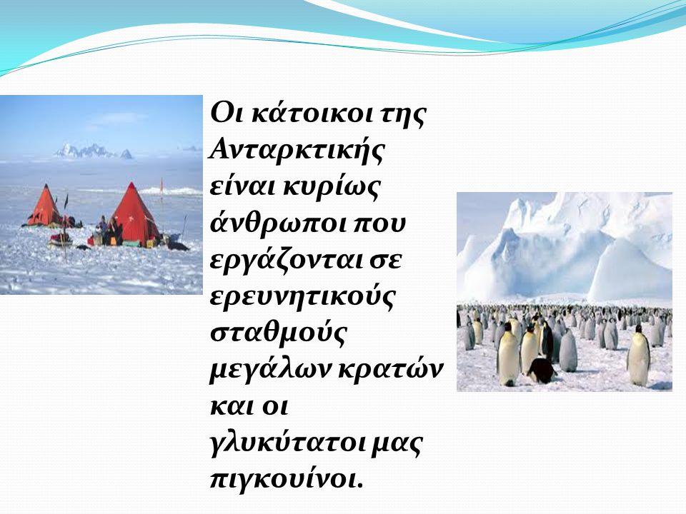 Οι κάτοικοι της Ανταρκτικής είναι κυρίως άνθρωποι που εργάζονται σε ερευνητικούς σταθμούς μεγάλων κρατών και οι γλυκύτατοι μας πιγκουίνοι.