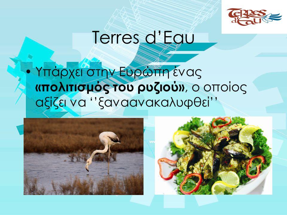 Terres d'Eau •Υπάρχει στην Ευρώπη ένας «πολιτισμός του ρυζιού», ο οποίος αξίζει να ''ξαναανακαλυφθεί''