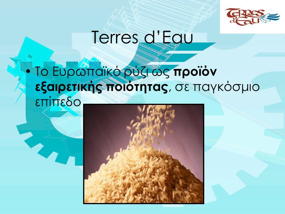 Terres d'Eau •Το Ευρωπαϊκό ρύζι ως προϊόν εξαιρετικής ποιότητας, σε παγκόσμιο επίπεδο