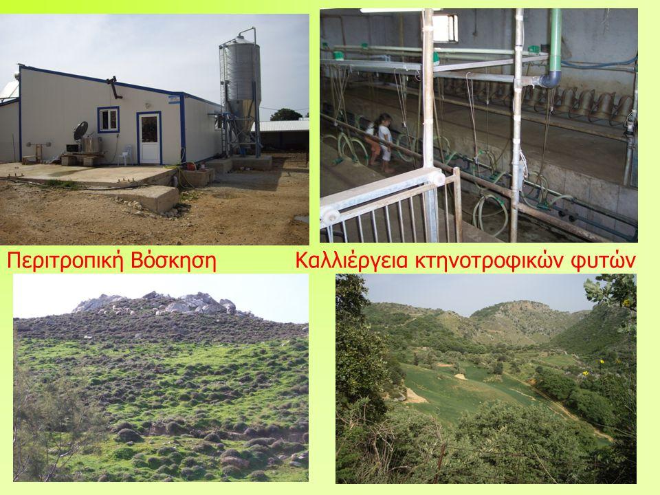Περιτροπική ΒόσκησηΚαλλιέργεια κτηνοτροφικών φυτών