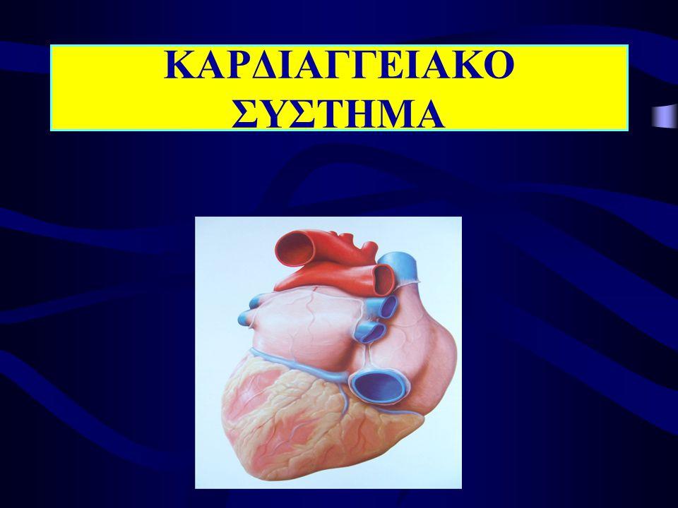 ΛΕΙΤΟΥΡΓΙΑ ΚΑΡΔΙΑΚΩΝ ΒΑΛΒΙΔΩΝ ΜΗΝΟΕΙΔΕΙΣ αποτροπή της παλινδρόμησης αίματος στις κοιλίες κατά την διάρκεια καρδιακής παύλας ΚΟΛΠΟΚΟΙΛΙΑΚΕΣ αποτροπή παλινδρόμησης αίματος προς τους κόλπους όταν συστέλλονται οι κοιλίες