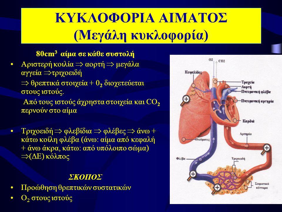 ΚΥΚΛΟΦΟΡΙΑ ΑΙΜΑΤΟΣ (Μεγάλη κυκλοφορία) 80cm 3 αίμα σε κάθε συστολή •Αριστερή κοιλία  αορτή  μεγάλα αγγεία  τριχοειδή  θρεπτικά στοιχεία + 0 2 διοχετεύεται στους ιστούς.