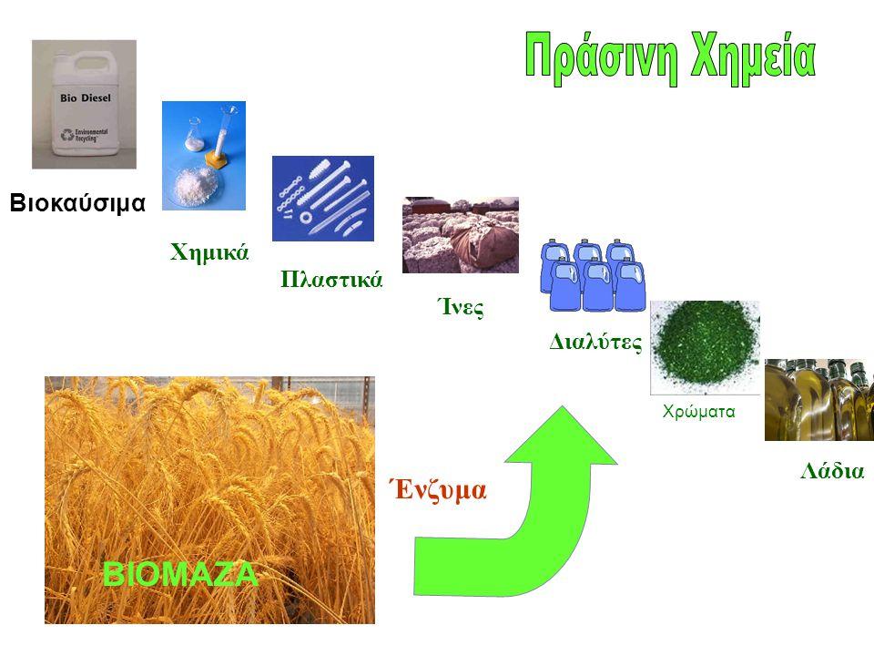 Χημικά Πλαστικά Ίνες Διαλύτες Λάδια Ένζυμα Βιοκαύσιμα ΒΙΟΜΑΖΑ Χρώματα