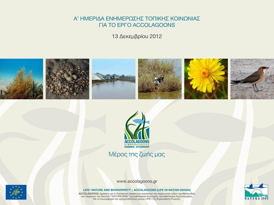 Έργου LIFE 09 (NAT/GR/000343) Δράσεις για τη διατήρηση παράκτιων οικοτόπων και σημαντικών ειδών ορνιθοπανίδας των περιοχών του δικτύου Natura 2000 Λ/Θ Επανωμής, Λ/Θ Αγγελοχωρίου ΔΡΑΣΕΙΣ ΟΜΙΚΡΟΝ Ε.Π.Ε.