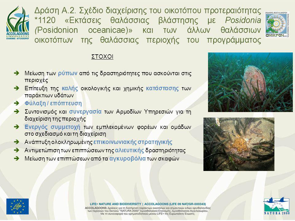 Εγκατάσταση περιβαλλοντικά φιλικών αγκυροβολίων για την εξυπηρέτηση των σκαφών αναψυχής με έμφαση στην περιοχή της Επανομής ΚΑΙ των επαγγελματικών σκαφών (παράκτιας αλιείας) με έμφαση στον Αγγελοχώρι και τη Βόρεια Επανομή, όπου παρατηρείται έντονη αλιευτική δραστητριότητα Βόρεια Επανομή : 2 Νότια Επανομή : 4 Αγγελοχώρι : 2 Δράση Α.2.