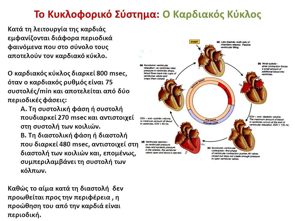 Το Κυκλοφορικό Σύστημα: Ο Καρδιακός Κύκλος Κατά τη λειτουργία της καρδιάς εμφανίζονται διάφορα περιοδικά φαινόμενα που στο σύνολο τους αποτελούν τον κ