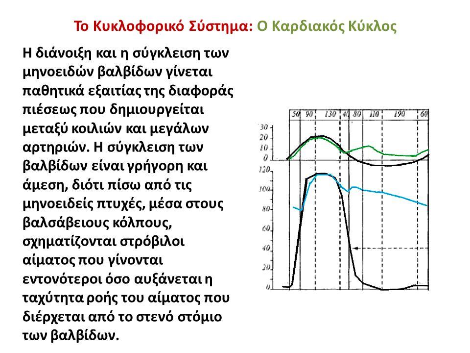Η διάνοιξη και η σύγκλειση των μηνοειδών βαλβίδων γίνεται παθητικά εξαιτίας της διαφοράς πιέσεως που δημιουργείται μεταξύ κοιλιών και μεγάλων αρτηριών