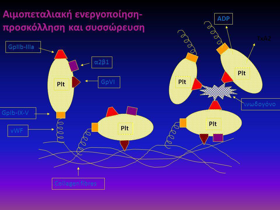 vWF GpIb-IX-V Plt Collagen fibres GpVI GpIIb-IIIa α2β1 ADP TxA2 Plt ινωδογόνο Plt Αιμοπεταλιακή ενεργοποίηση- προσκόλληση και συσσώρευση