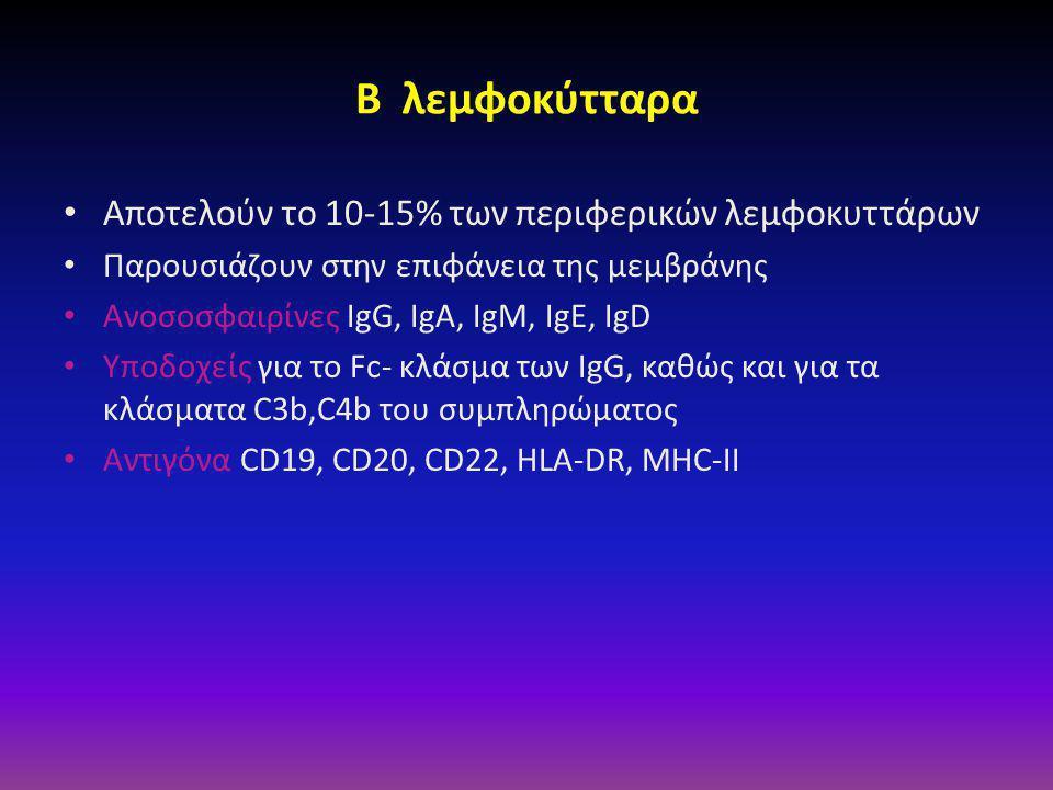 B λεμφοκύτταρα • Αποτελούν το 10-15% των περιφερικών λεμφοκυττάρων • Παρουσιάζουν στην επιφάνεια της μεμβράνης • Ανοσοσφαιρίνες IgG, IgA, IgM, IgE, IgD • Υποδοχείς για το Fc- κλάσμα των IgG, καθώς και για τα κλάσματα C3b,C4b του συμπληρώματος • Αντιγόνα CD19, CD20, CD22, HLA-DR, MHC-II