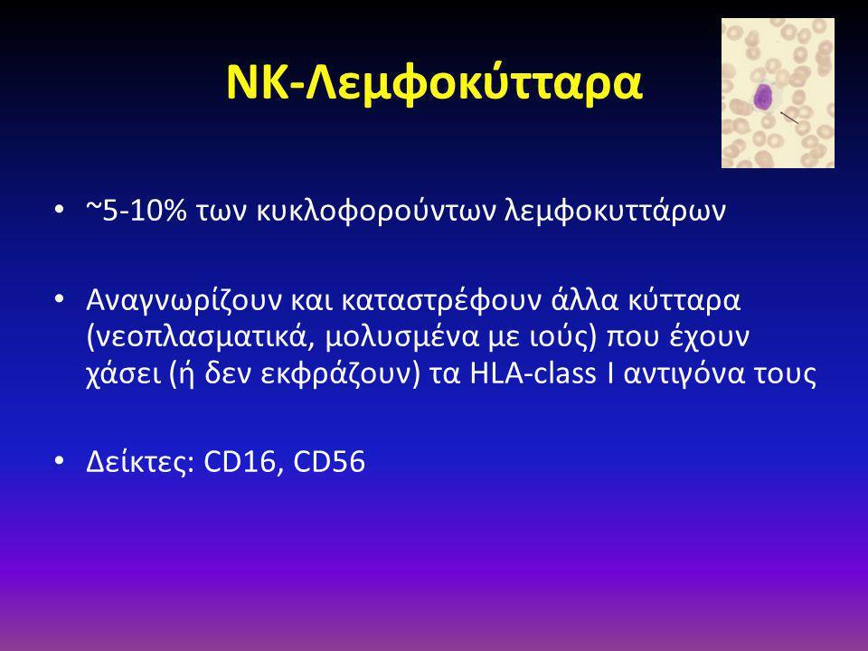 ΝΚ-Λεμφοκύτταρα • ~5-10% των κυκλοφορούντων λεμφοκυττάρων • Aναγνωρίζουν και καταστρέφουν άλλα κύτταρα (νεοπλασματικά, μολυσμένα με ιούς) που έχουν χάσει (ή δεν εκφράζουν) τα HLA-class I αντιγόνα τους • Δείκτες: CD16, CD56