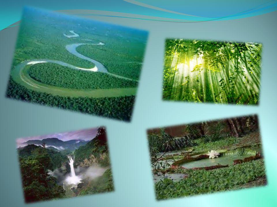 Η εξαφάνιση της Αράλης συχνά περιγράφεται ως η μεγαλύτερη περιβαλλοντική καταστροφή που έγινε από τον άνθρωπο.
