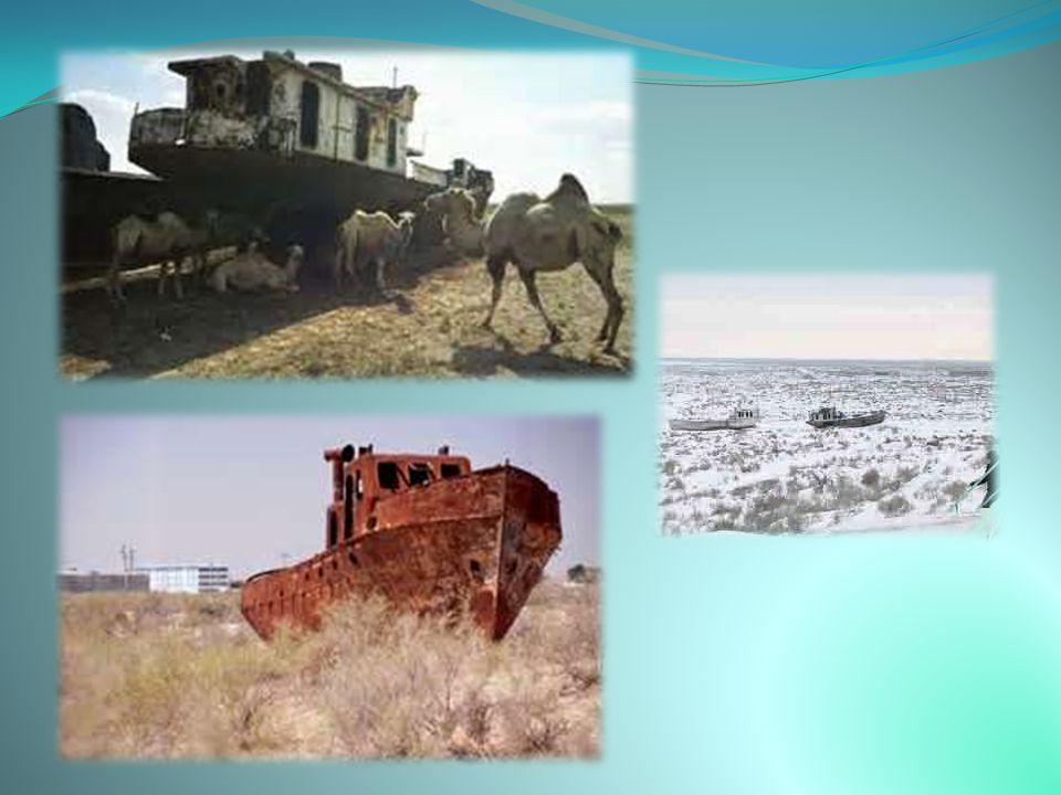 ΑΡΑΛΗ  Η Αράλη στα σύνορα Καζακστάν-Ουζμπεκιστάν κάποτε ήταν η τρίτη μεγαλύτερη λίμνη του κόσμου, με έκταση 68.000 τετραγωνικά χιλιόμετρα, περίπου τη