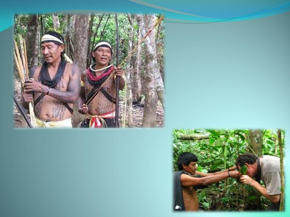 Ο Αμαζόνιος είναι ένα γεωγραφικό διαμέρισμα της Κολομβίας. Βρίσκεται νοτιοανατολικά της χώρας. Ήταν ειδικό έδαφος μέχρι που έγινε διαμέρισμα από το Σύ