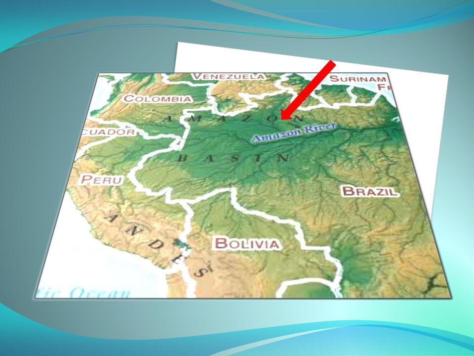 ΓενισέιΓενισέι Ο Γενισέι είναι ποταμός (4.092 χλμ.) της ανατολικής Ρωσίας, στη Σιβηρία, ένας από τους μεγαλύτερους του κόσμου.