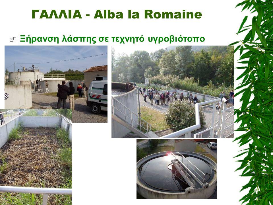 ΓΑΛΛΙΑ - Alba la Romaine  Ξήρανση λάσπης σε τεχνητό υγροβιότοπο