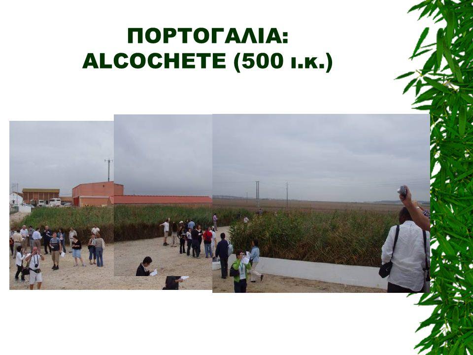 ΠΟΡΤΟΓΑΛΙΑ: ALCOCHETE (500 ι.κ.)