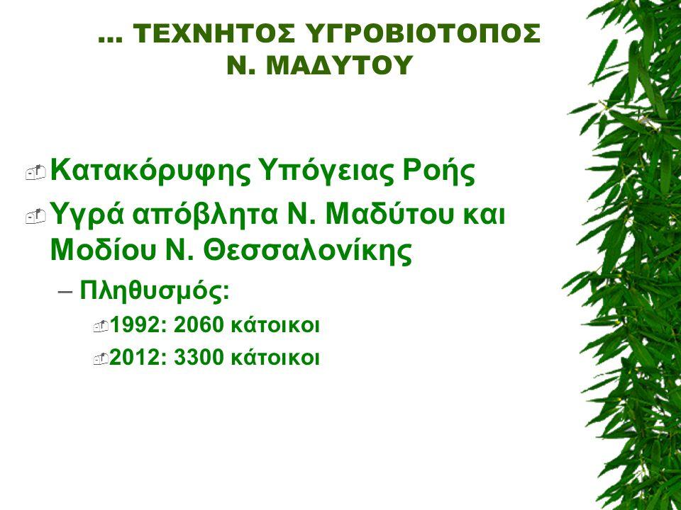 … ΤΕΧΝΗΤΟΣ ΥΓΡΟΒΙΟΤΟΠΟΣ Ν. ΜΑΔΥΤΟΥ  Κατακόρυφης Υπόγειας Ροής  Υγρά απόβλητα Ν. Μαδύτου και Μοδίου Ν. Θεσσαλονίκης –Πληθυσμός:  1992: 2060 κάτοικοι