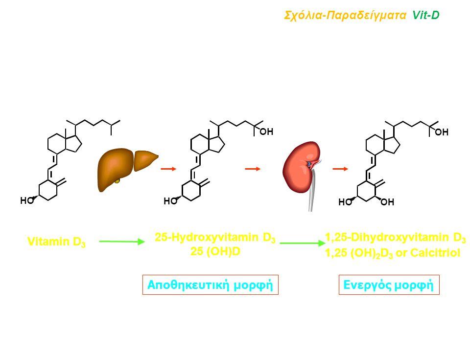Vitamin D 3 25-Hydroxyvitamin D 3 25 (OH)D 1,25-Dihydroxyvitamin D 3 1,25 (OH) 2 D 3 or Calcitriol HO OH HO OH HO Σχόλια-Παραδείγματα Vit-D Αποθηκευτι