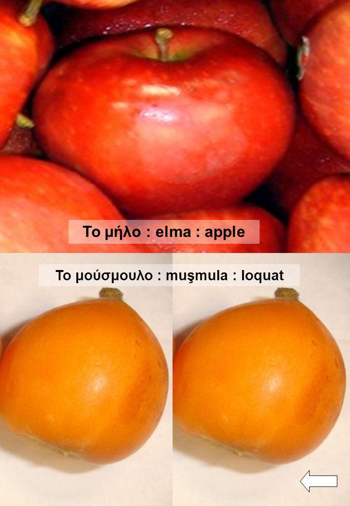 Το μήλο : elma : apple Το μούσμουλο : muşmula : loquat
