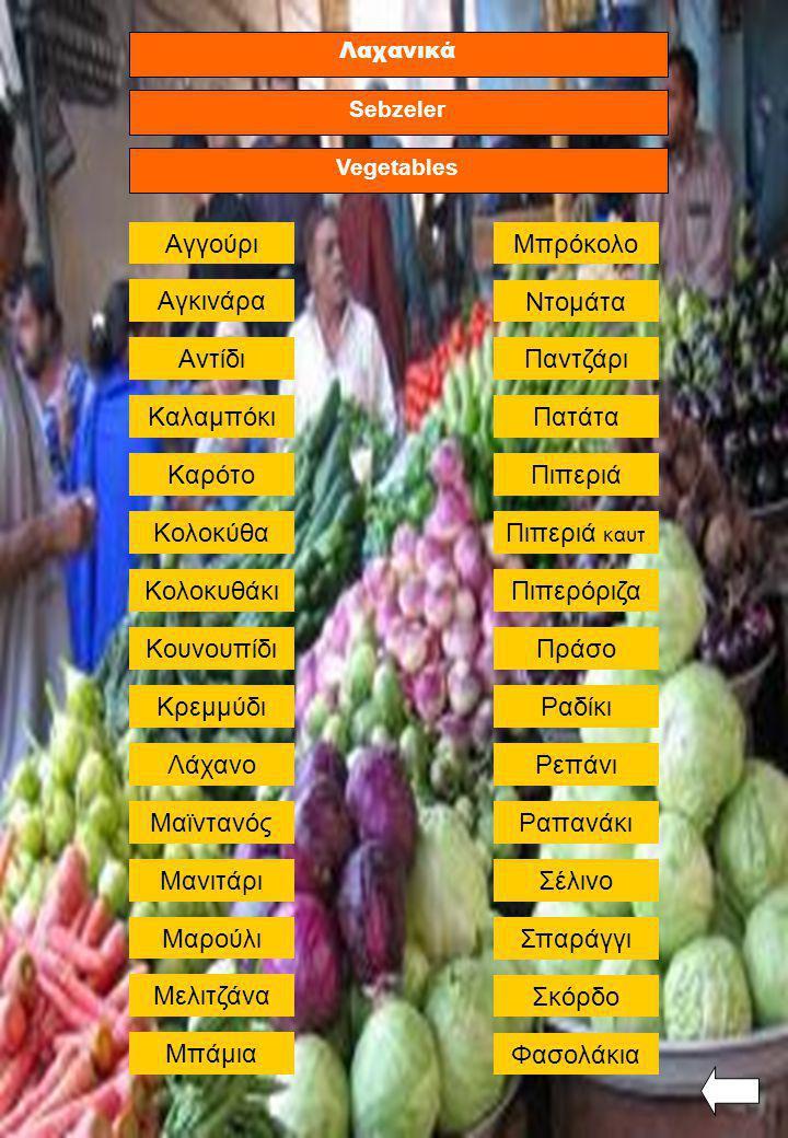 Λαχανικά Vegetables Sebzeler Σέλινο ΠράσοΚουνουπίδι Ραδίκι Αντίδι Λάχανο Σπαράγγι ΑγγούριΜπρόκολο Αγκινάρα Κολοκυθάκι Καλαμπόκι Φασολάκια Καρότο Κρεμμ