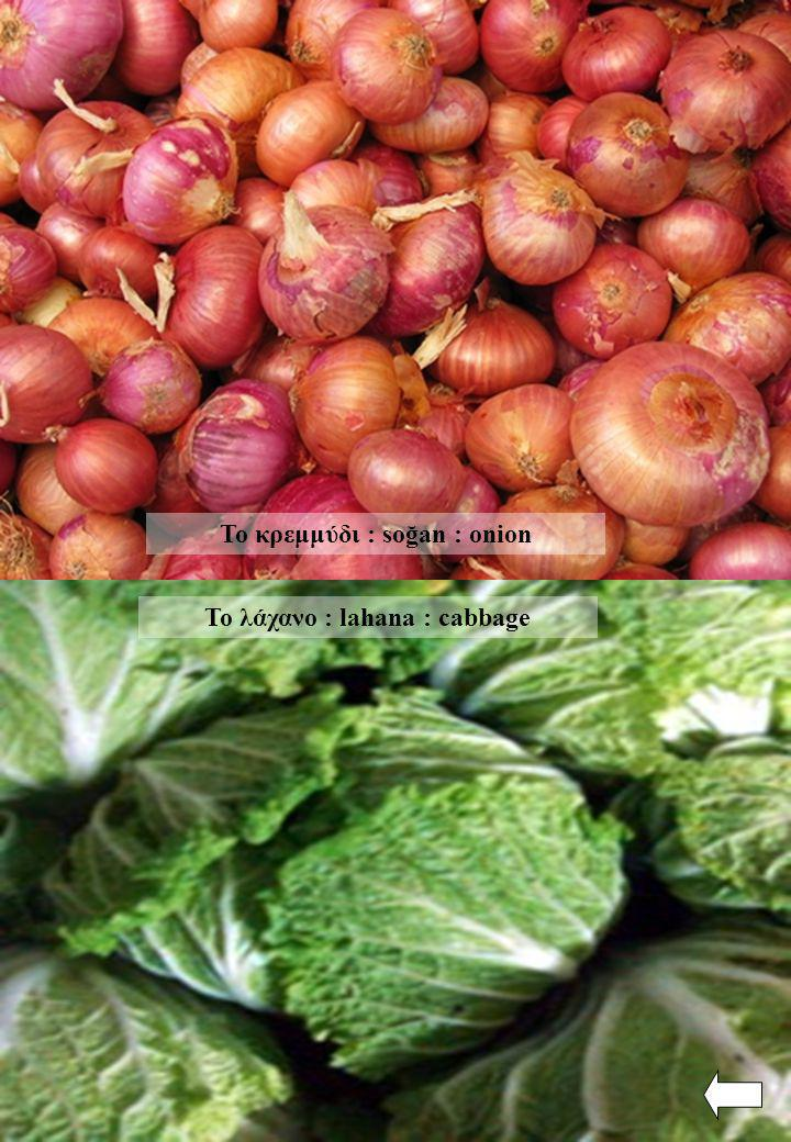 Το λάχανο : lahana : cabbage Το κρεμμύδι : soğan : onion