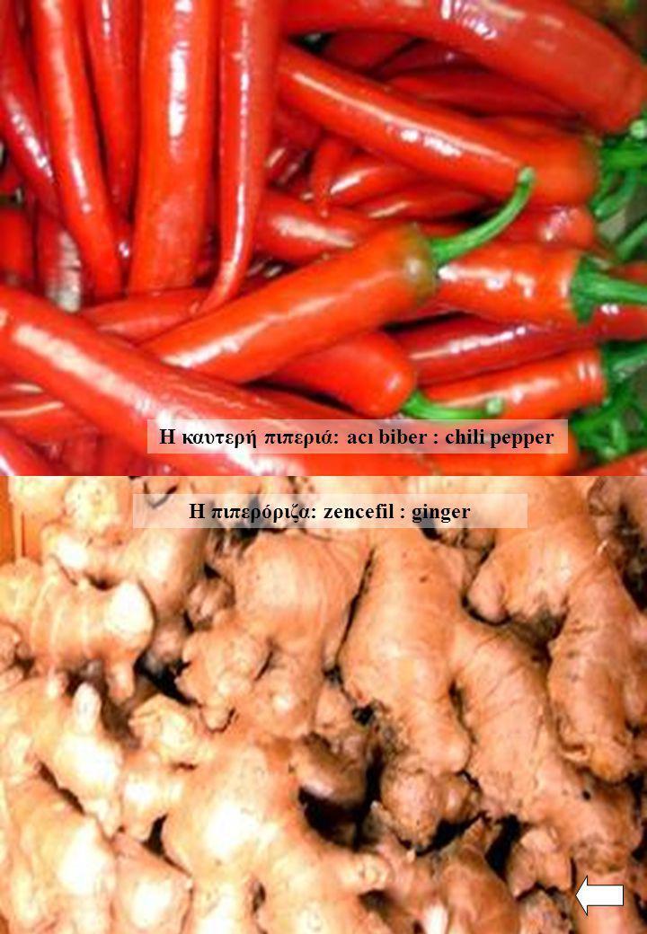 Η πιπερόριζα: zencefil : ginger Η καυτερή πιπεριά: acı biber : chili pepper