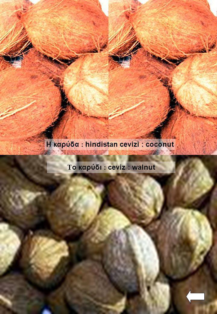 Τ ο καρύδι : ceviz : walnut Η καρύδα : hindistan cevizi : coconut