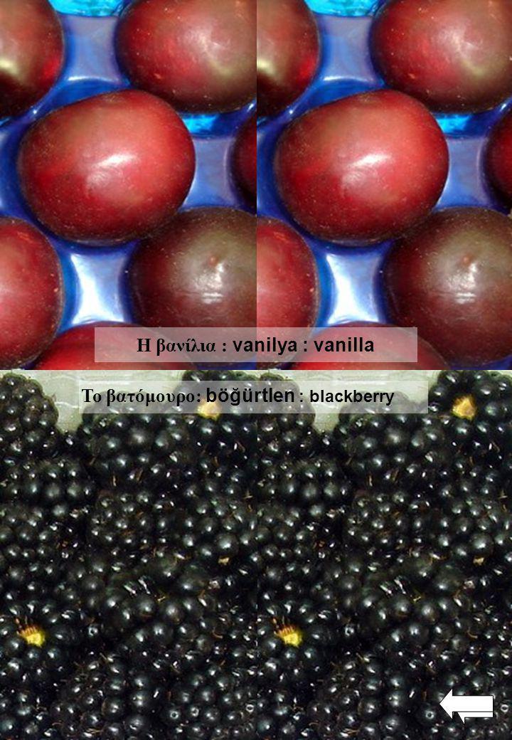 Το βατόμουρο: böğürtlen : blackberry Η βανίλια : vanilya : vanilla