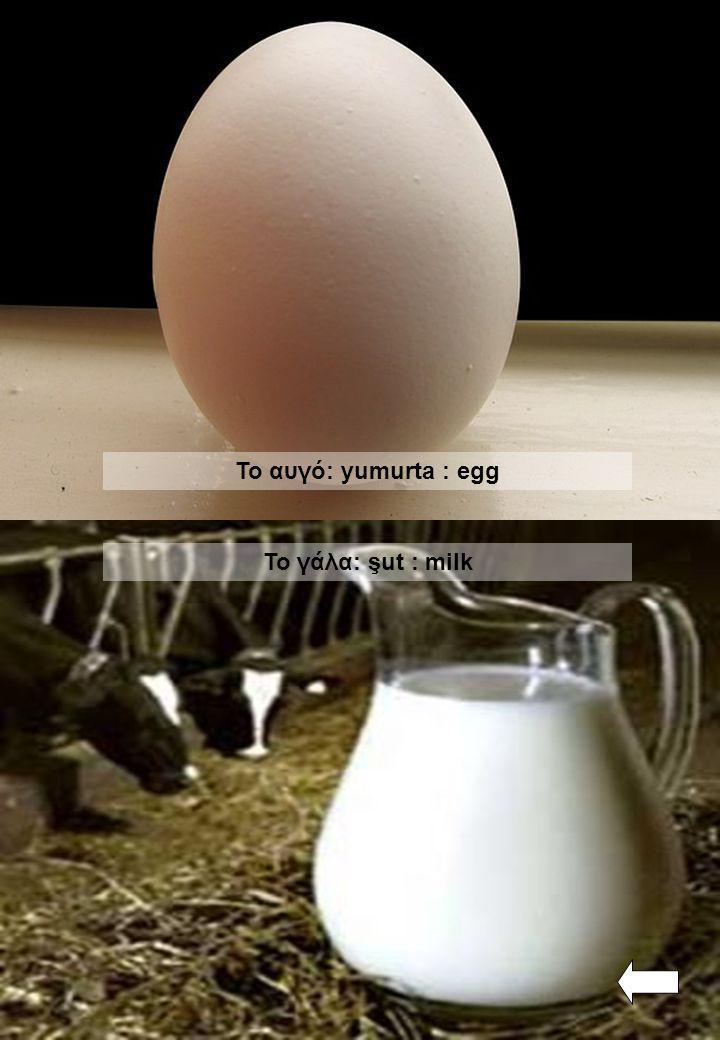 Το αυγό: yumurta : egg Το γάλα: şut : milk