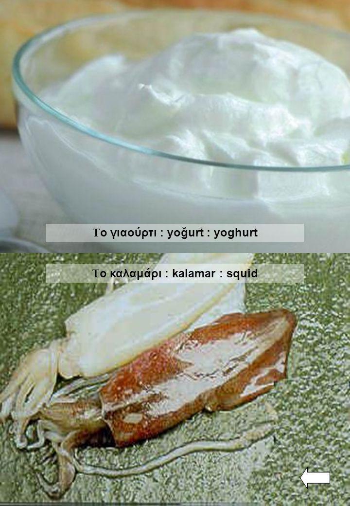 Τ ο γιαούρτι : yoğurt : yoghurt Τ ο καλαμάρι : kalamar : squid