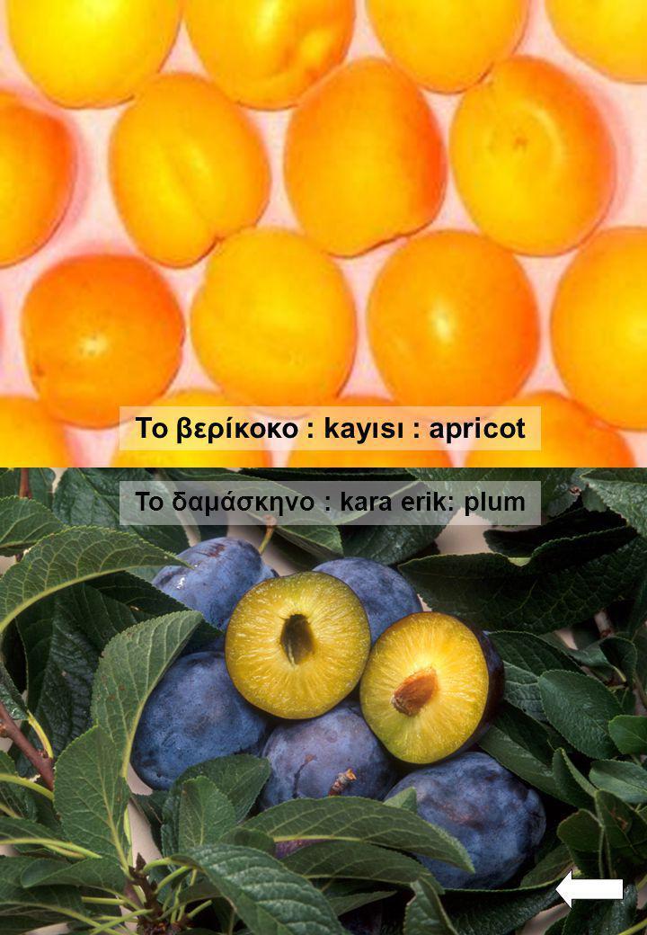 Το κεράσι: kiraz : cherry To καρπούζι : karpuz : water melon