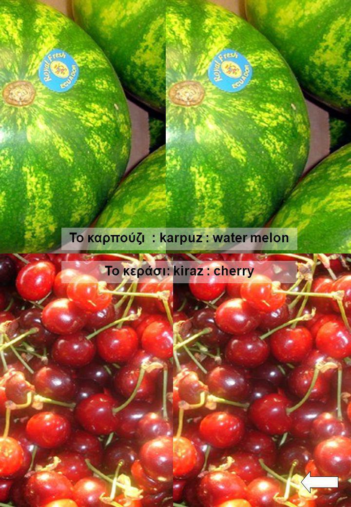 Τ ο ρεβίθι : nohut : chick - pea Ο πασατέμπος : kabak çekirdeği : pumpkin seed