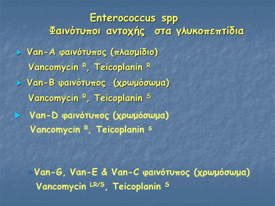 Enterococcus spp Φαινότυποι αντοχής στα γλυκοπεπτίδια  Van-A φαινότυπος (πλασμίδιο) Vancomycin R, Teicoplanin R Vancomycin R, Teicoplanin R  Van-B φ