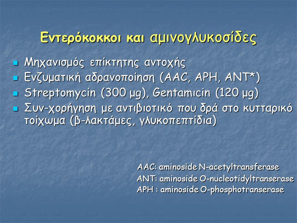 Εντερόκοκκοι και αμινογλυκοσίδες  Μηχανισμός επίκτητης αντοχής  Ενζυματική αδρανοποίηση (AAC, APH, ANT*)  Streptomycin (300 μg), Gentamιcin (120 μg)  Συν-χορήγηση με αντιβιοτικό που δρά στο κυτταρικό τοίχωμα (β-λακτάμες, γλυκοπεπτίδια) AAC: aminoside N-acetyltransferase AAC: aminoside N-acetyltransferase ANT: aminoside O-nucleotidyltranserase ANT: aminoside O-nucleotidyltranserase APH : aminoside O-phosphotranserase APH : aminoside O-phosphotranserase