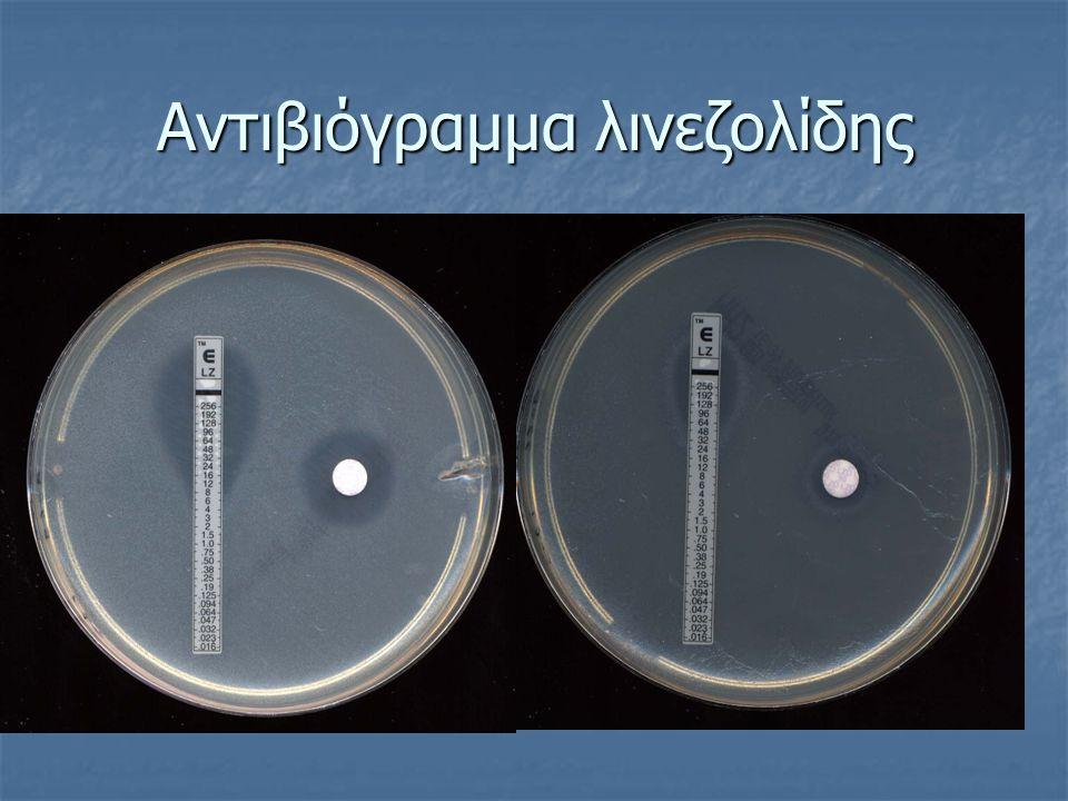 Αντιβιόγραμμα λινεζολίδης